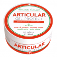 Articular Protect Gel